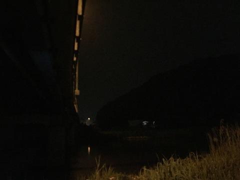 こんな所に巨大魚が !! 死闘_e0115904_11165513.jpg