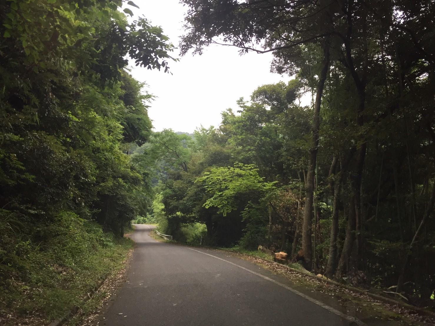 湯梨浜 不動滝_e0115904_11373292.jpg