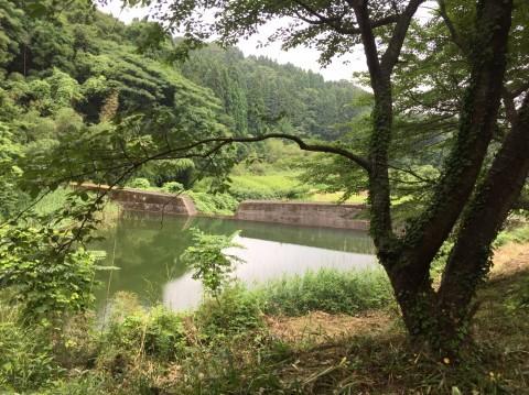 湯梨浜 不動滝_e0115904_11415001.jpg