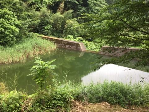湯梨浜 不動滝_e0115904_11415786.jpg