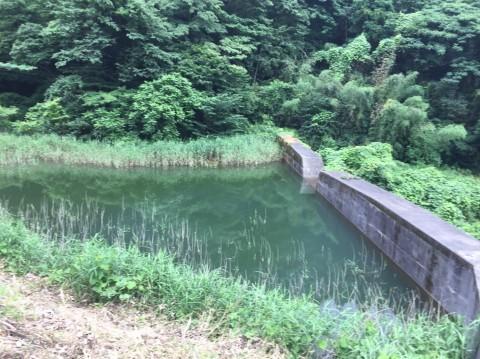 湯梨浜 不動滝_e0115904_11422165.jpg