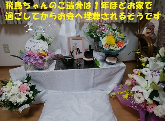 f0121712_01101411.jpg