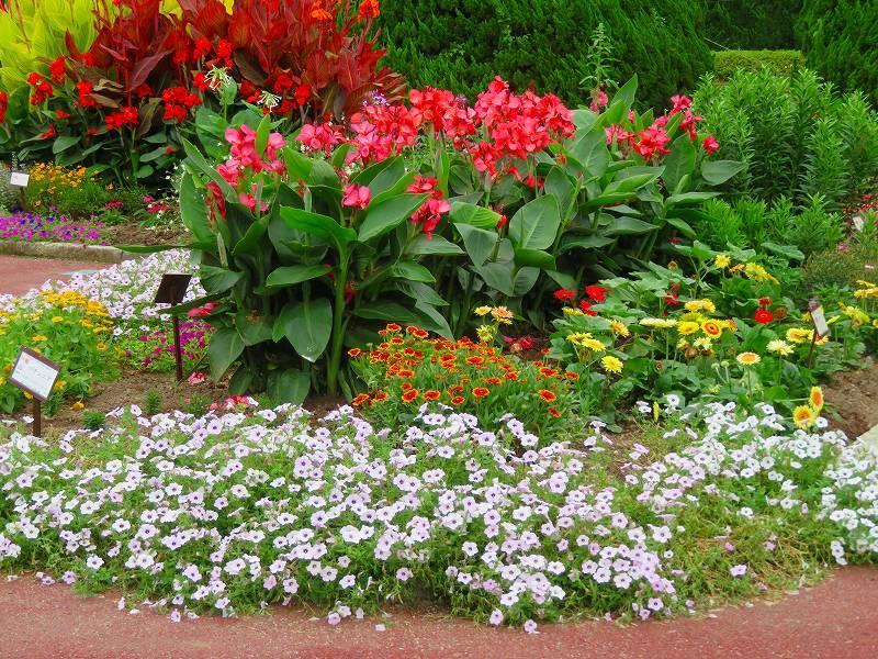 噴水のある「沈床花壇とカラフルな花々」20190707_e0237645_14053900.jpg