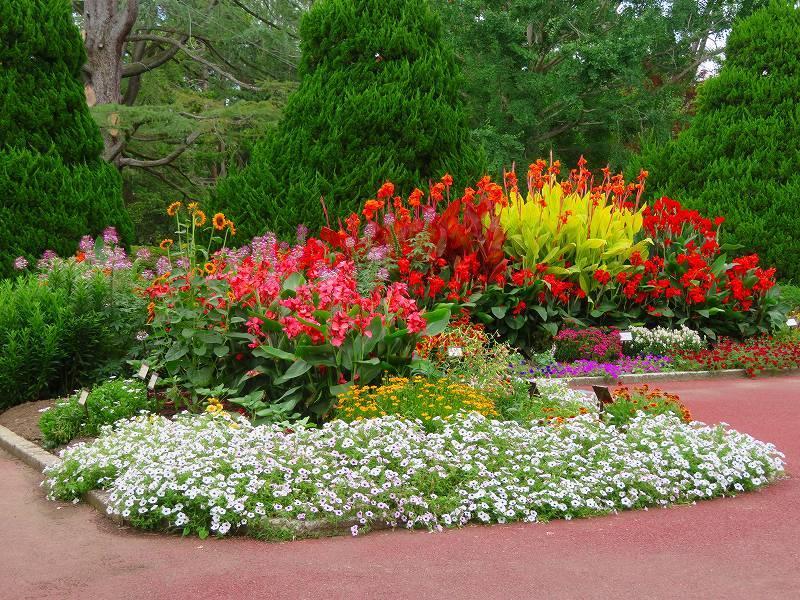 噴水のある「沈床花壇とカラフルな花々」20190707_e0237645_14053903.jpg