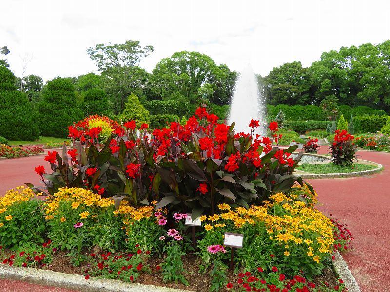 噴水のある「沈床花壇とカラフルな花々」20190707_e0237645_14053976.jpg
