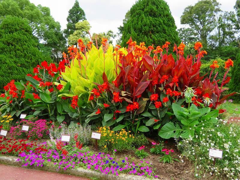 噴水のある「沈床花壇とカラフルな花々」20190707_e0237645_14065309.jpg
