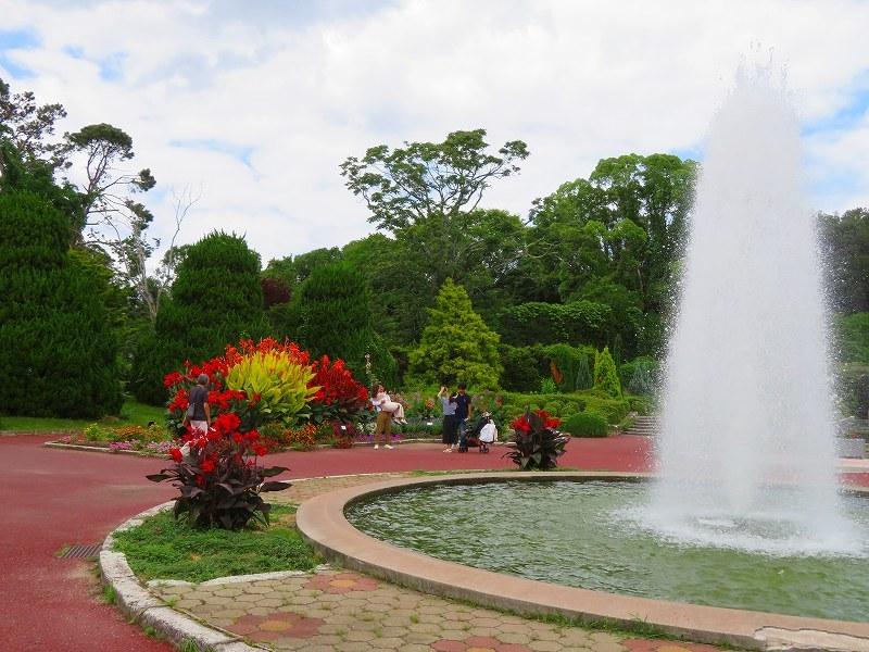 噴水のある「沈床花壇とカラフルな花々」20190707_e0237645_14065391.jpg