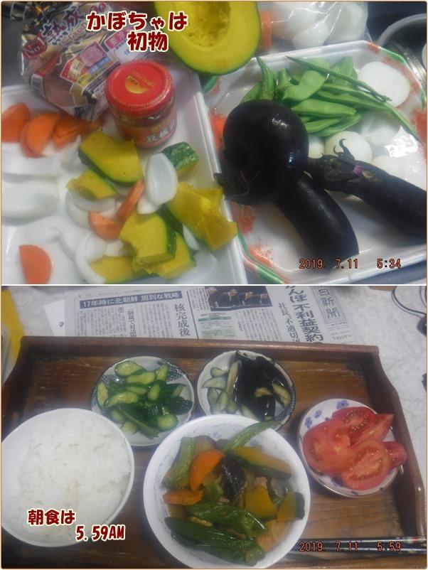 冷凍 野菜 ガッテン ためして