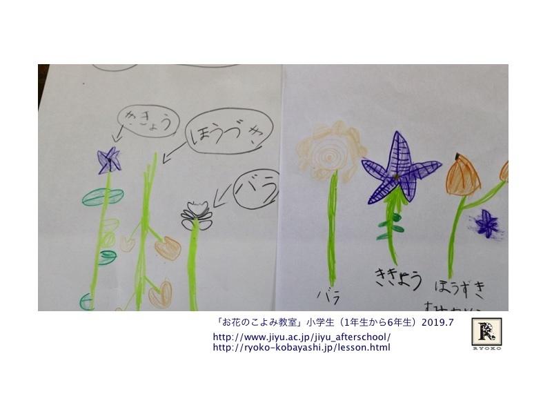 トライアルの1年生も加わっての第二弾☆_c0128489_01355167.jpg