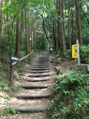 宗像 四塚連山トレイル_f0220089_10493814.jpg