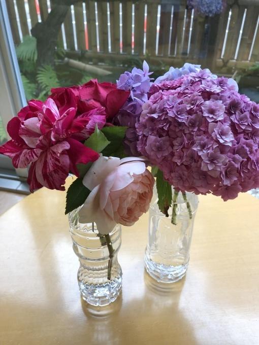 紫陽花と薔薇のプレゼント_b0159098_16062194.jpg