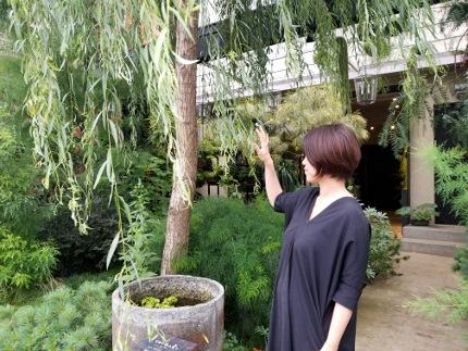 フラワーアトリエ TSUBAKIさん_b0122805_1730333.jpg