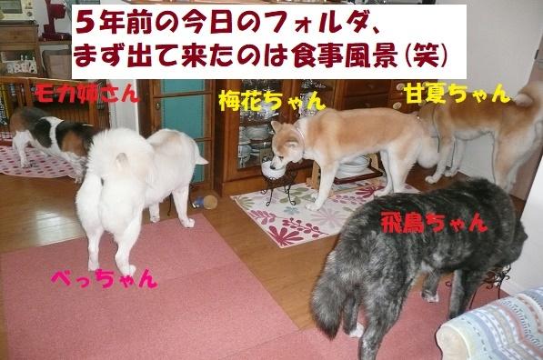 f0121712_14081604.jpg