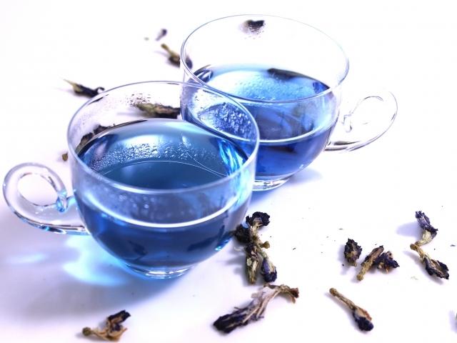 こんな青いお茶_b0365715_04353457.jpeg
