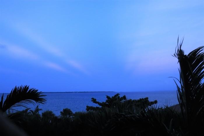 一夜しか咲かない「サガリバナ」を見に沖縄観光へ_d0150720_18225142.jpg