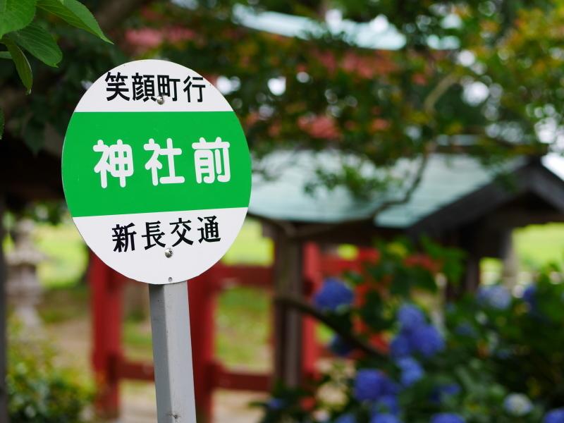 杜々路神社_e0169421_22400220.jpg