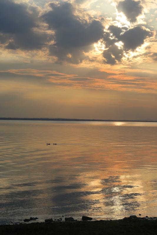 金色に銀色に光る湖の夕、トラジメーノ湖_f0234936_732072.jpg