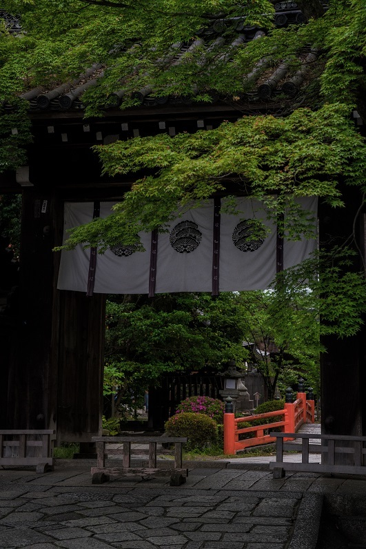 今宮神社_e0363038_10233805.jpg