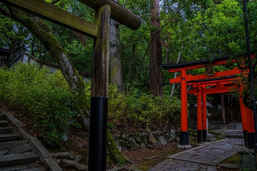 今宮神社_e0363038_10234580.jpg