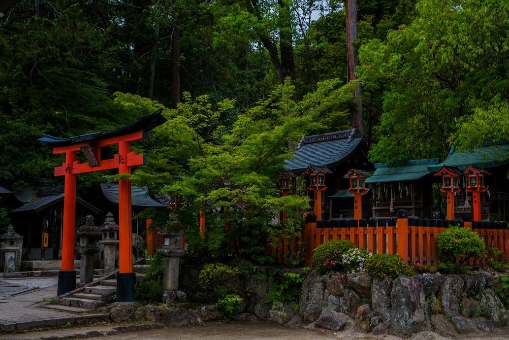 今宮神社_e0363038_10235132.jpg