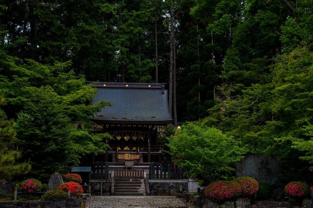 今宮神社_e0363038_10240772.jpg