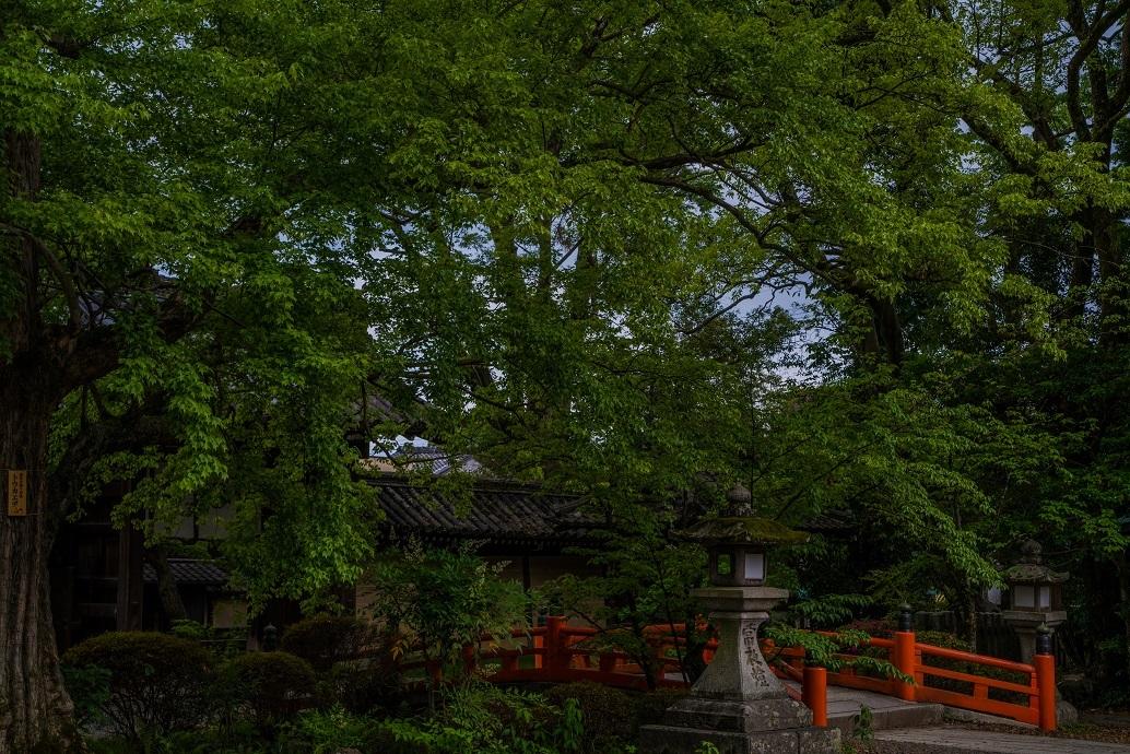 今宮神社_e0363038_10241539.jpg