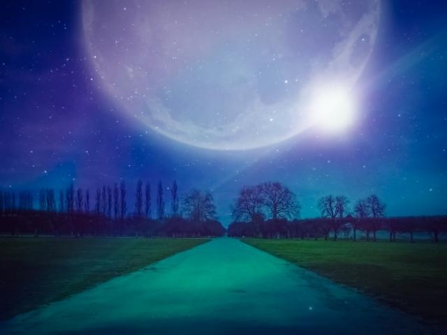 今日は満月…。~アリが歩いて…~_b0298740_14210659.jpg