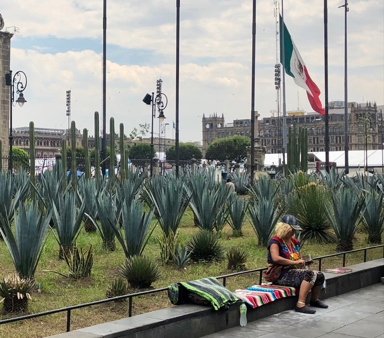 中南米の旅/69 アステカ帝国が眠るソカロ広場@メキシコシティ_a0092659_06472082.jpg