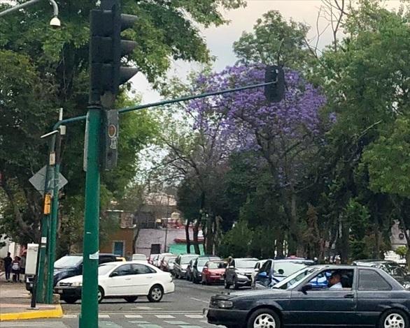 中南米の旅/70 メキシコシティの風景_a0092659_23385261.jpg