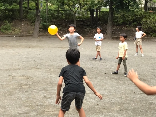 新江ノ島水族館・ドッチボール大会_e0131910_09593560.jpg