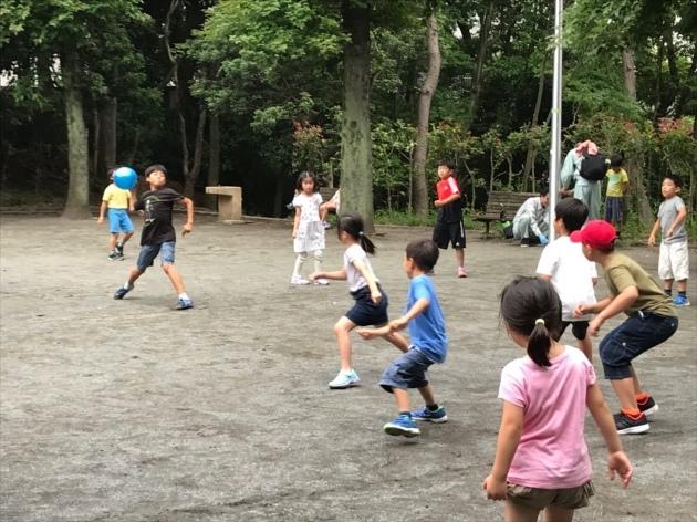 新江ノ島水族館・ドッチボール大会_e0131910_09594374.jpg