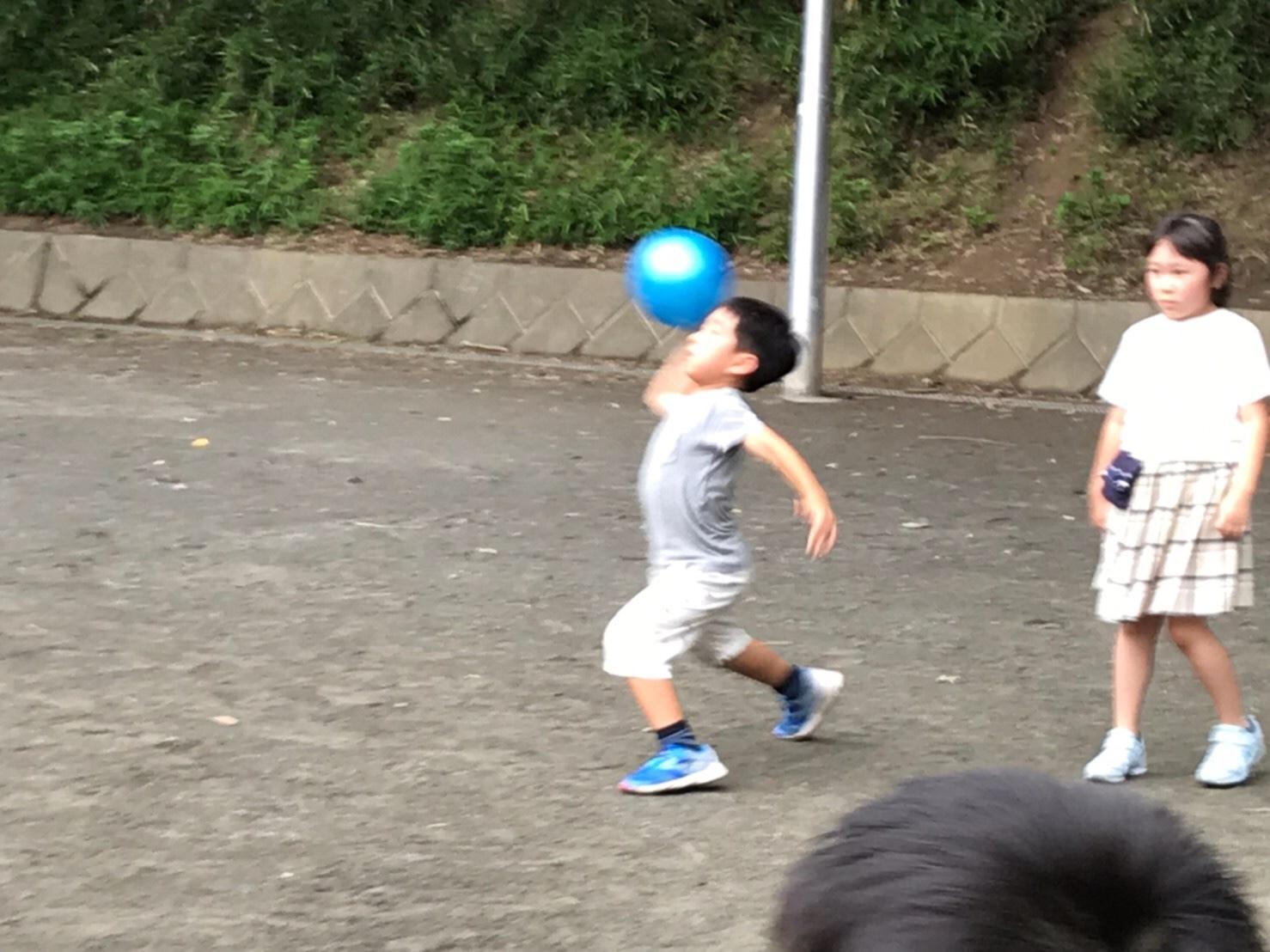 新江ノ島水族館・ドッチボール大会_e0131910_09595779.jpg