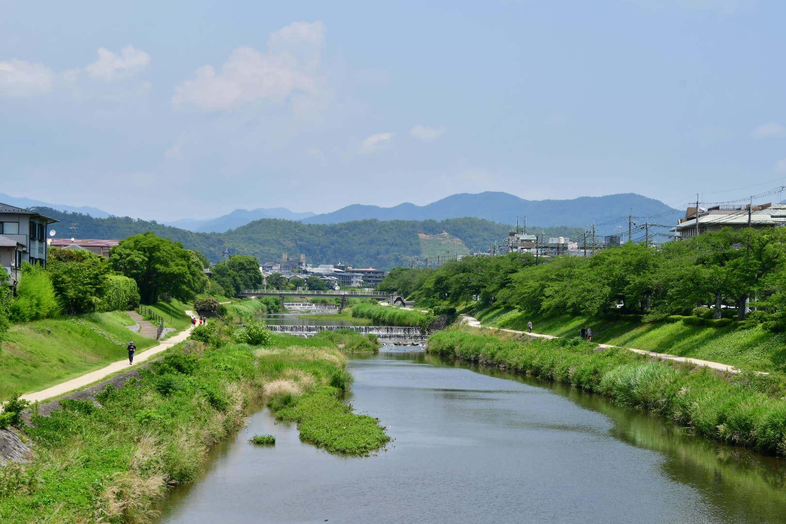 京都旅 2019 その7_b0223512_00225719.jpeg
