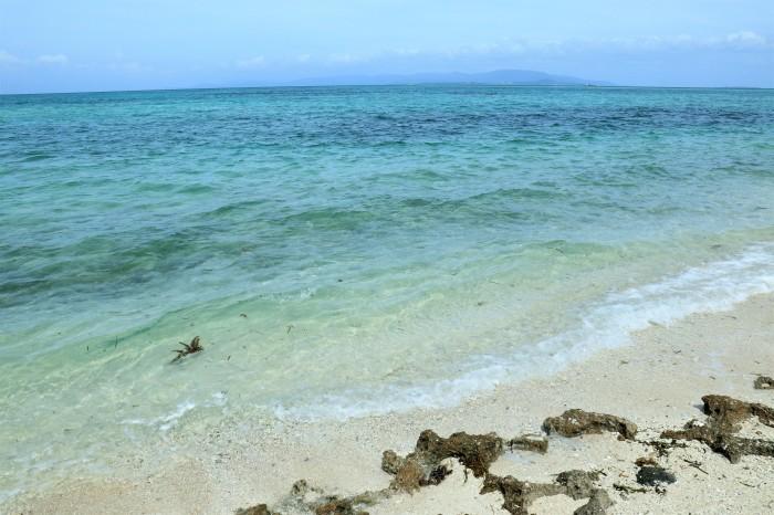 一夜しか咲かない「サガリバナ」を見に沖縄観光へ  _d0150720_17122899.jpg