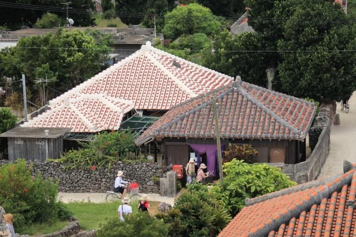 一夜しか咲かない「サガリバナ」を見に沖縄観光へ  _d0150720_17131543.jpg