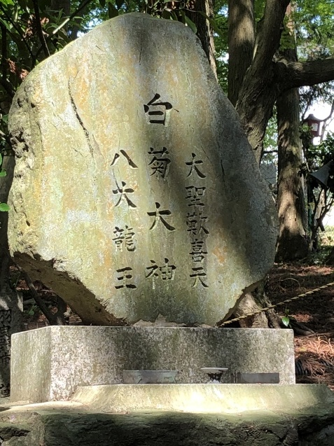 (17)瀬織津姫からのミッション①八大龍王総本山へ_b0409627_20353163.jpg