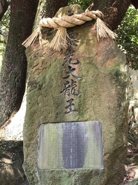 (17)瀬織津姫からのミッション①八大龍王総本山へ_b0409627_20362820.jpg