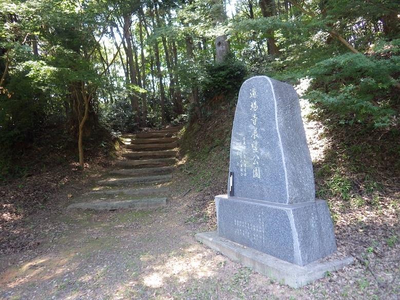 近隣の低山を歩く・・道場寺山、覗山_e0164643_13454391.jpg