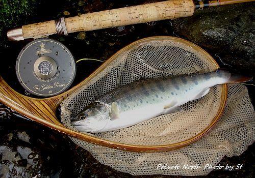 Stさん今週の釣り_d0261148_17261795.jpg