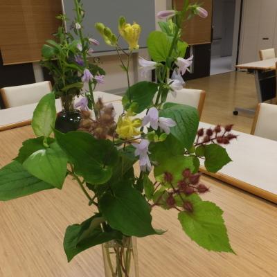 オークリーフ(絵画教室の花)_f0049672_11111756.jpg