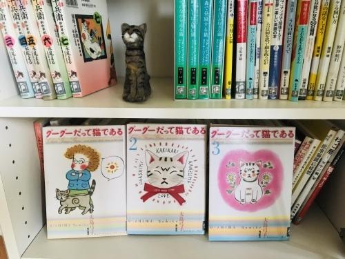 桜舎「ねこのわ文庫」活用中_f0054677_06510254.jpg