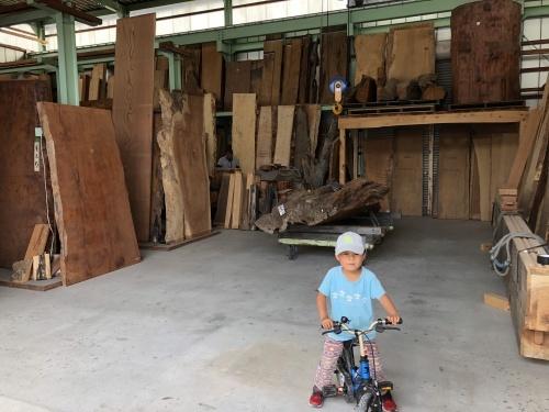 材木屋見学での楽しみ_a0148909_15163011.jpeg