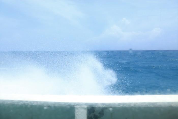 一夜しか咲かない「サガリバナ」を見に沖縄観光へ  _d0150720_13334767.jpg