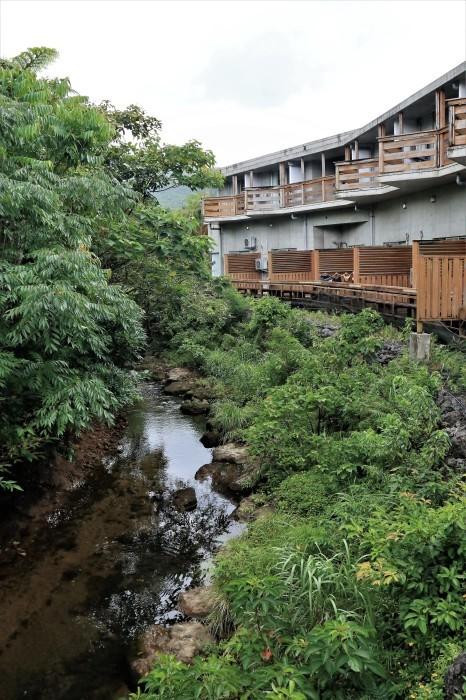 一夜しか咲かない「サガリバナ」を見に沖縄観光へ  _d0150720_14302027.jpg