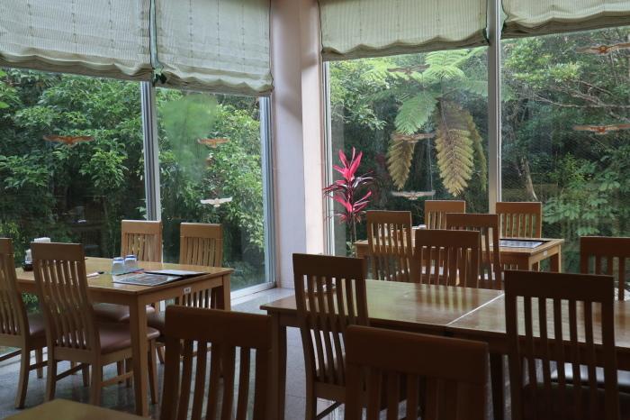 一夜しか咲かない「サガリバナ」を見に沖縄観光へ  _d0150720_14311874.jpg