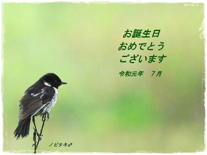 d0129921_20155615.jpg