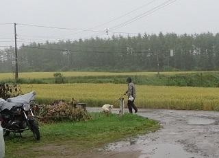 雨降りの一日_b0405523_12480917.jpg