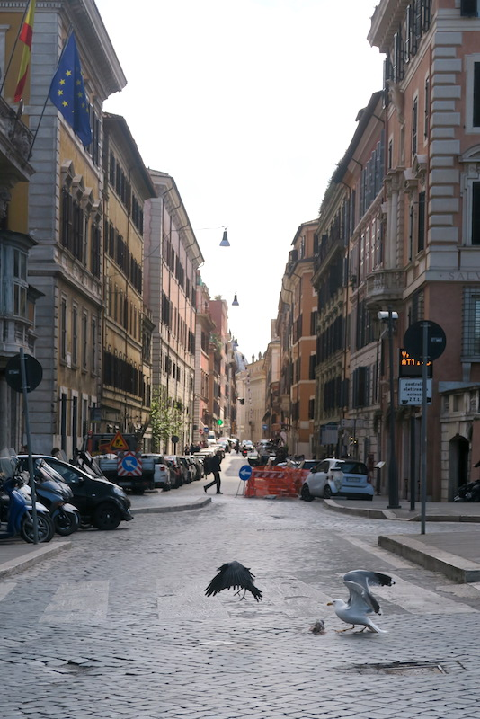 明日はローマに投票に、FlixBusでペルージャから_f0234936_51713100.jpg