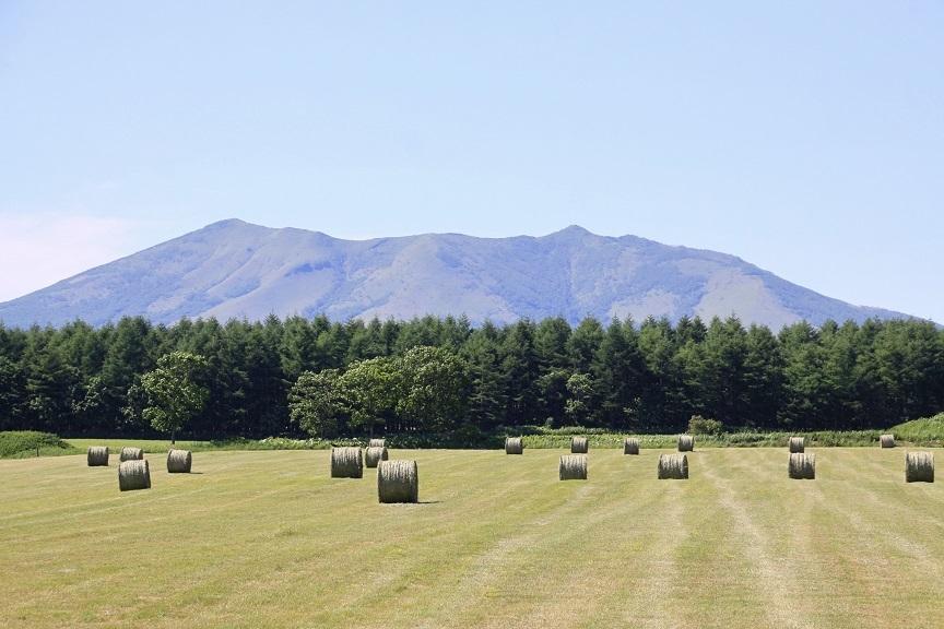 牧草ロールのある風景 7月14日_f0113639_16142418.jpg