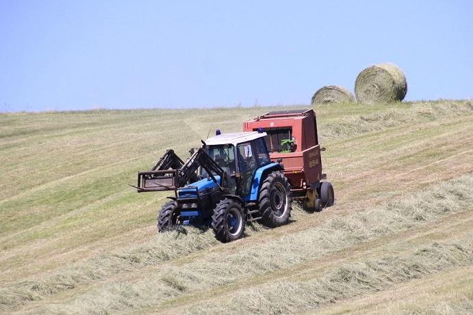 牧草ロールのある風景 7月14日_f0113639_16151428.jpg